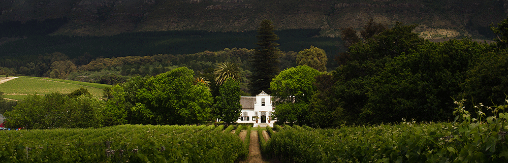 exact-events-staffingwinelands-venue